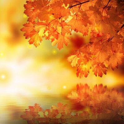 Plakat Abstract jesień klon refleksja