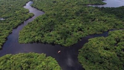 Plakat Aerial strzał lasów deszczowych Amazonii w Brazylii, Ameryce Południowej