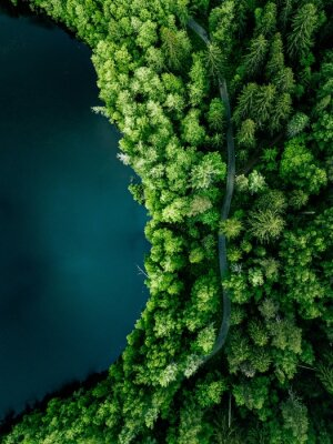 Plakat Aerial top view of country road in green summer forest and blue lake. Rural landscape in Finland.