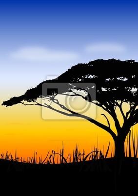 Plakat Afryka słońca