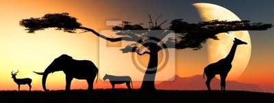 Plakat Afrykańskich zwierząt