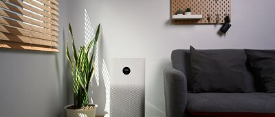 Plakat Air purifier with houseplant on the floor. Air pollution concept.