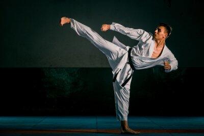 Plakat An image of a taekwondo martial arts master