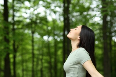 Plakat Asian woman breathing fresh air in a forest
