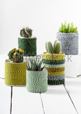 Plakat Assortment of handmade cactus pot. Home decoration. Selective focus.