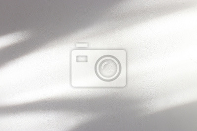 Plakat background of organic shadow over white textured wall