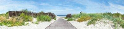 Plakat Baltic Sea Beach - Dune Path Panorama