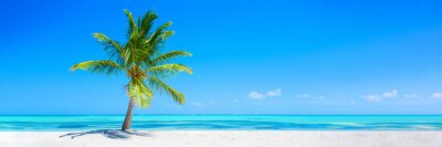 Plakat Banner of idyllic tropical beach with white sand, palm tree and turquoise blue ocean