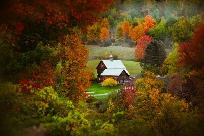 Plakat Barn in rural Vermont nestled between fall foliage