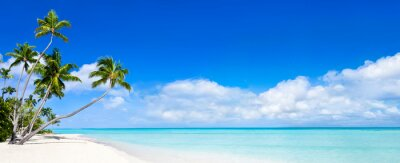 Plakat Beach panorama z niebieskiej wody i palm