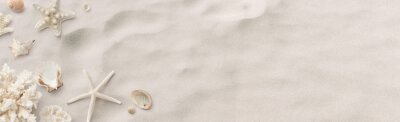 Plakat beach / sea themed banner or header with beautiful shells, corals and starfish on pure white sand - summer concept