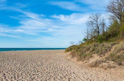 Plakat Beachfront along Lake Michigan in Indiana Dunes State Park