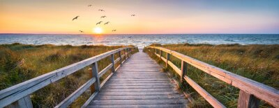 Plakat Beautiful dunes beach at sunset, North Sea, Germany