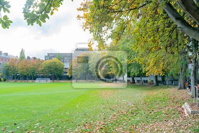 Plakat Beautiful scene around Trinity College