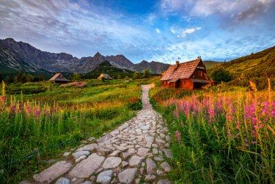 Plakat Beautiful summer sunrise in the mountains - Hala Gasienicowa in Poland - Tatras