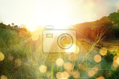 Plakat Beautiful sunrise in the mountain..Meadow landscape refreshment with sunray and golden bokeh.