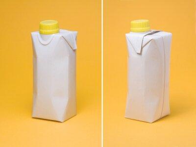 Biały modelu pakiet