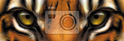 Plakat  Big eyes. Eyes of a red tiger close up.