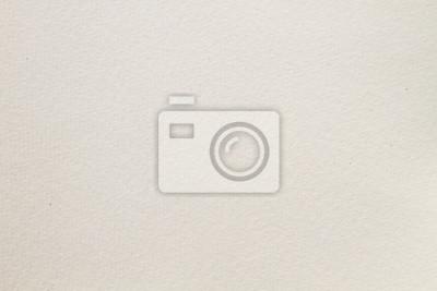 Plakat Blank watercolor drawing paper texture
