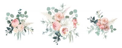 Plakat Blush pink garden roses, ranunculus, hydrangea flowers vector design bouquets
