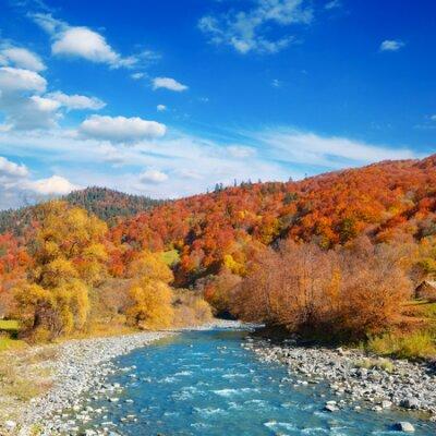 Plakat Bright autumn landscape valley mountain river.