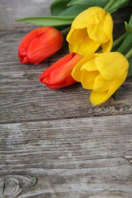 Plakat Bukiet żółtych i czerwonych tulipanów