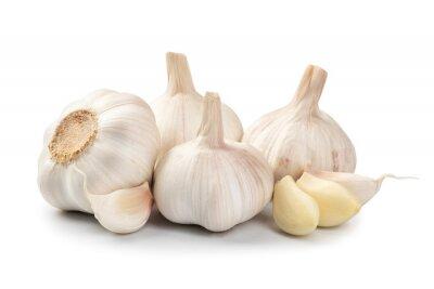 Plakat bulb garlic isolated on a white background