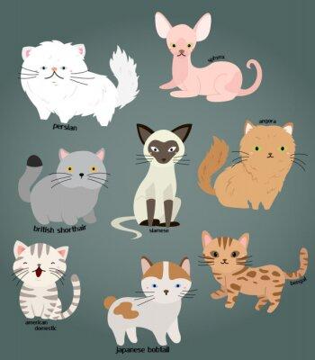 Plakat Cat wektora zestaw