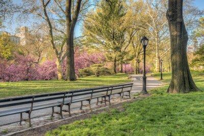 Plakat Central Park, Nowy Jork