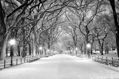 Plakat Central Park, Nowy Jork pokryte śniegiem o świcie