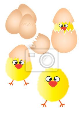 Plakat Chicks i ilustracji jaja