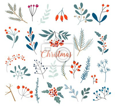 Plakat Christmas floral collection with winter decorative plants and flowers. Cute hand drawn in scandinavian style. Illustration of winter berries and Christmas branches.
