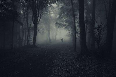 Plakat ciemny las z upiorny człowiek chodzenie na drodze