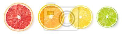 Plakat Citrus fruit slices isolated on white background