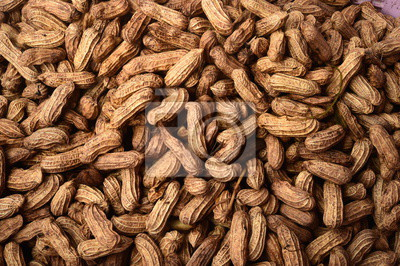 Plakat close up of boiled peanut for background