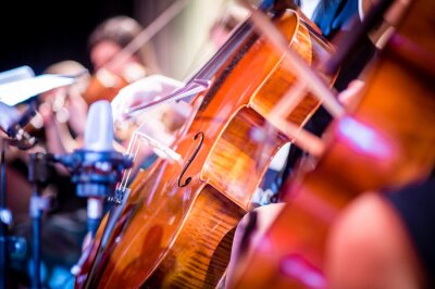Plakat Close-Up Of Violin