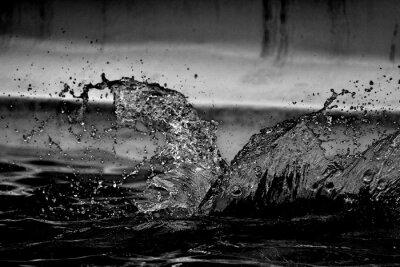 Plakat Close-up Of Water Splashing On Pool