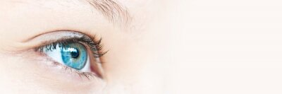 Plakat Close up on a girl blue eye, panoramic web banner with copy space
