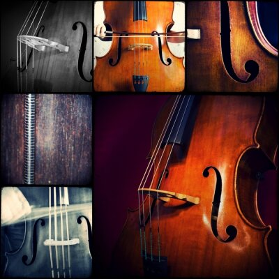 Plakat Collage Music - kontrabas - kontrabas - kontrabass