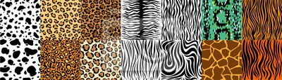 Plakat Collection of natural seamless patterns with coat, skin of fur textures of wild exotic animals - zebra, snake, tiger, leopard, giraffe. Flat vector illustration for wrapping paper, textile print.
