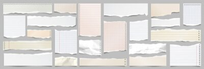 Plakat Colored ripped lined paper strips collection. Realistic paper scraps with torn edges. Sticky notes, shreds of notebook pages. Vector illustration.