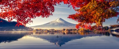 Plakat Colorful Autumn Season and Mountain Fuji with morning fog and red leaves at lake Kawaguchiko is one of the best places in Japan