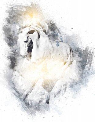 Plakat Colorful horse art illustration grunge painting