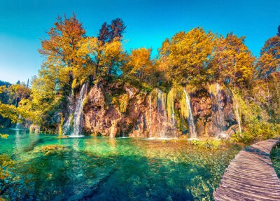 Plakat Colorful summer morning in the Plitvice Lakes National Park.