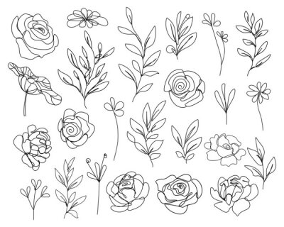 Plakat Continuous Line Drawing Set Of Flowers, Leaves, Plants Black Sketch Isolated on White Background. Simple Flowers One Line Illustration Set. Minimalist Botanical Drawing. Vector EPS 10.