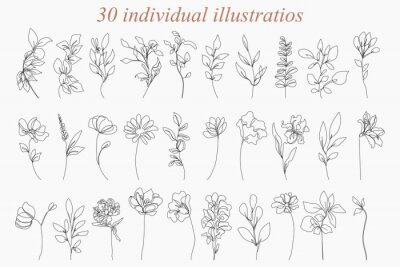 Plakat Continuous Line Drawing Set Of Plants Black Sketch of Flowers Isolated on White Background. Flowers One Line Illustration. Minimalist Prints Set. Vector EPS 10.