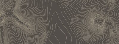 Plakat Contours vector topography. Geographic mountain topography vector illustration. Topographic pattern texture. Elevation graphic contour height lines.