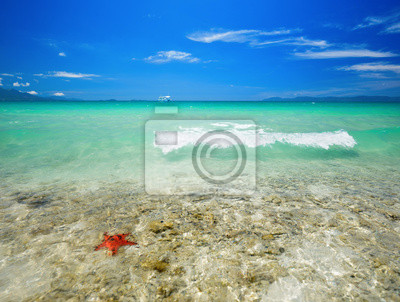 Plakat Coral tropikalnej plaży na tle wyspy