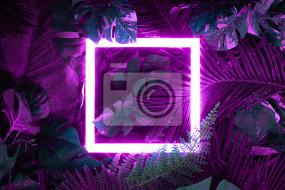 Plakat Creative fluorescent color layout made of tropical leaves with neon light square. Flat lay. Nature concept.