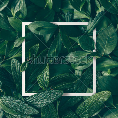 Plakat Creative layout made of flowers and leaves with paper card note. Flat lay. Nature concept